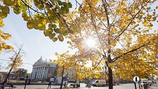 Южноуральцам прогнозируют теплую, новетреную погоду