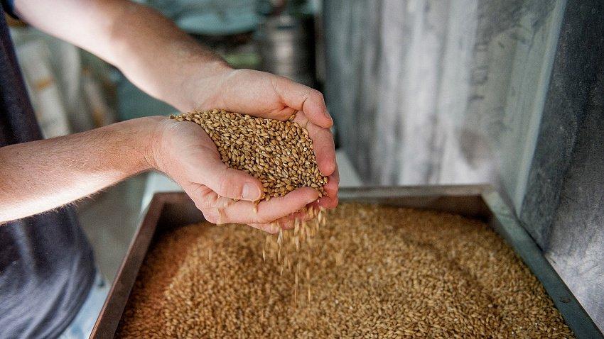 Челябинские пивовары: рост пошлин не повлияет на работу местных предприятий отрасли