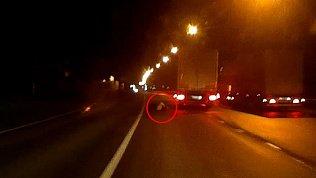 На трассе М-5 в Челябинской области мужчина попал под фуру: видео очевидцев