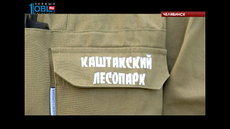 В Каштакском бору появилась специальная бригада по благоустройству