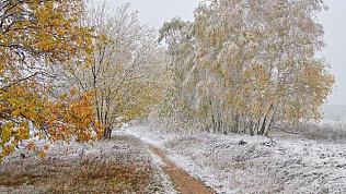 Памятка: Как не замерзнуть на прогулке