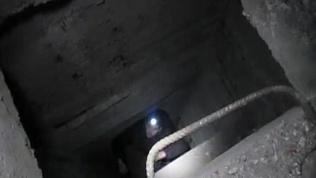 Магнитогорские диггеры спасли бабочку в секретном бомбоубежище