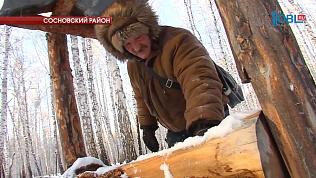 Косулям и лосям Южного Урала не хватает соли