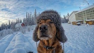 Апрель на Южном Урале начнется с 20-градусных морозов