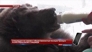 По Троицким улицам гуляет живой медведь