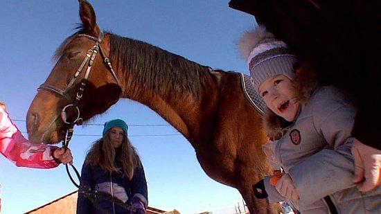 Лечение детей через общение с лошадью