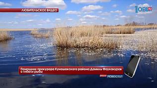 Помощник прокурора Кунашакского района Дамиль Фаукануров о гибели рыбы