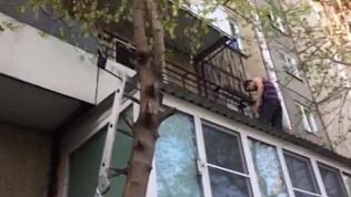 Жители дома по ул.Братьев Кашириных развернули спецоперацию по спасению котенка с запертого балкона