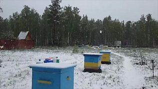 Майский снег выпал недалеко от Магнитогорска
