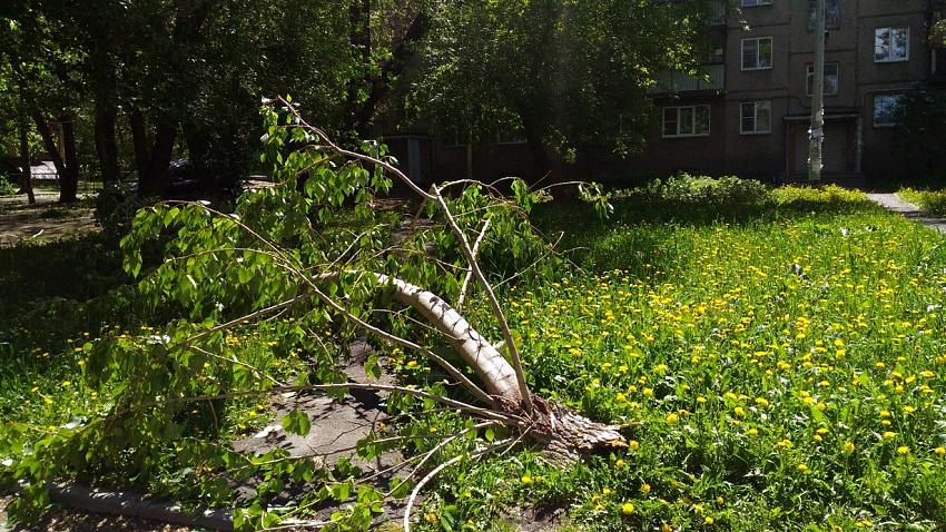 Синоптики прогнозируют «стабильную» погоду после урагана в Челябинской области