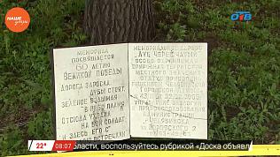 Наше УТРО на ОТВ – три самых знаменитых дерева Челябинска