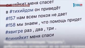 """Опубликовано видео задержания предполагаемого куратора """"групп смерти"""""""