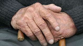 Отвлекшиеся родственники потеряли в саду 71-летнего пенсионера без памяти