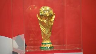 Кубок Мира FIFA прибыл в Челябинск