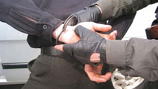 Похитившего 36,5 тысяч долларов иностранца задержали в Челябинске