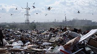 Новую систему по переработке ТБО на Южном Урале должны запустить через 7 месяцев