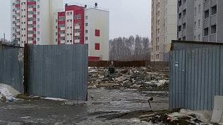 «Кормить не надо». Неизвестное существо поставили на охрану стройки в Челябинске