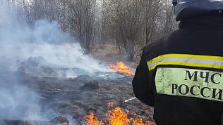Для тушения природных пожаров привлечено около 300 человек