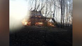 Случайные или умышленные поджоги стали причиной природных пожаров