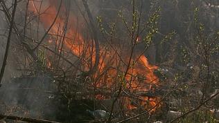 Заправку и близлежащие постройки спасли от пожара сотрудники МЧС