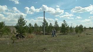 Многодетным семьям начали предоставлять землю