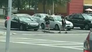 Храбрые девушки помогли малышу-аллигатору пересечь дорогу и попали на видео