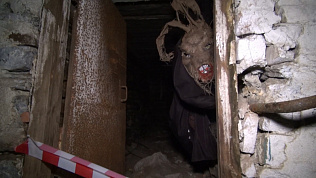 Необъяснимые явления природы и даже привидения: в Челябинской области организовали необычный квест для собак и их хозяев