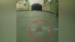 Жуткого призрака засняли туристы во время сплава по реке