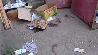 Расчлененный женский труп обнаружили челябинцы в мусорном баке