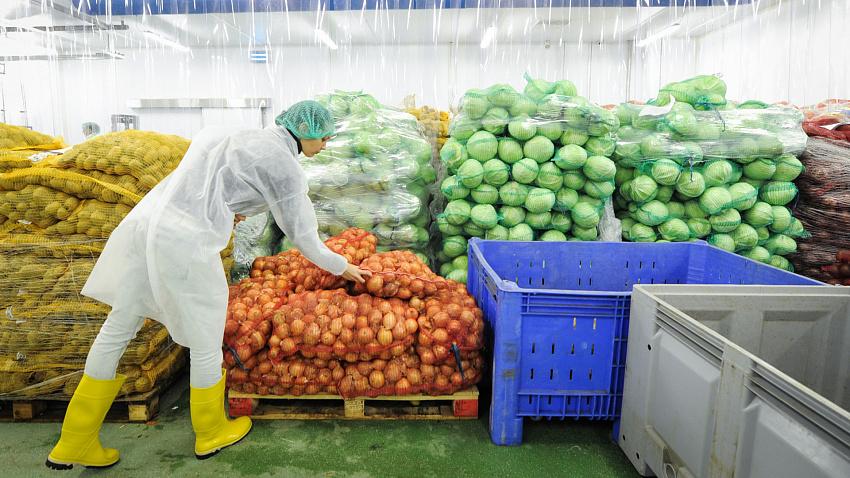 Поставки с Южного Урала в Узбекистан достигли 12 тысяч тонн сельхозпродукции