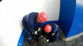 Глухаря поймали спасатели Усть-Катавского отряда