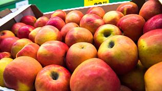 Овощи и фрукты без химикатов: миф или современная реальность?