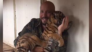 У тигрицы из цирковой труппы Багдасаровых родились малыши
