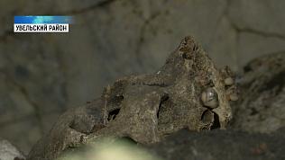 В Увельском районе обнаружен череп шамана?