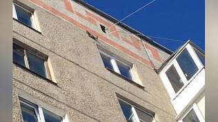 Белка-паркурщица удивила магнитогорцев 8 марта. ВИДЕО