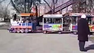 В России прославился детский паровозик, который ездит под Rammstein