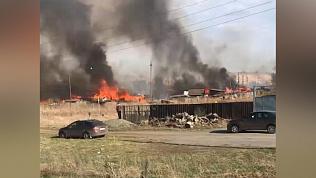 Барбекю на природе закончились крупным пожаром. Видео очевидцев