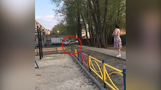 Водитель на девятке попытался разнести двор в Копейске