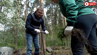Глава региона помог волонтерам с озеленением городского бора