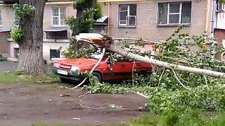 Оранжевый уровень опасности из-за погоды объявлен в Челябинске