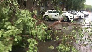 Ураган бушует в области