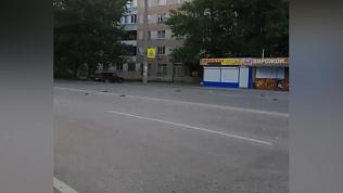 Челябинцев напугали мертвые голуби на дороге