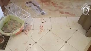 СК опубликовал видео с места убийства жены экс-вратаря «Трактора»