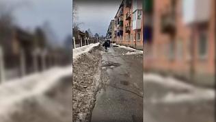 Замдиректора управляющей компании в Симе осудят за смерть пенсионерки от ледяной глыбы