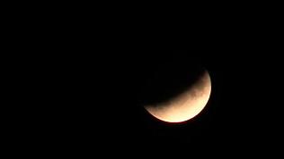 Видео-трансляция лунного затмения