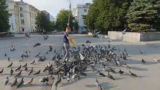 Челябинский школьник привёл на Кировку 500 голубей