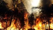 ВЧелябинской области запоследние дни зафиксировано четыре пожара