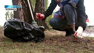 Общественники очистили берег Изумрудного карьера