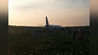 По факту жесткой посадки борта «Уральских авиалиний» возбуждено уголовное дело
