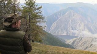 Владимир Путин гуляет по сибирской тайге: смотрим видео